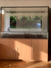 Terrarium inklusive Unterschrank