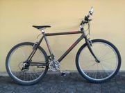 American Eagle Fahrrad - Reparaturbedürftig