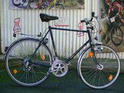 Herren - Fahrrad von BRENNABOR 12