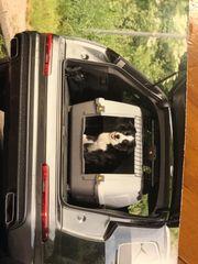 Transportboxen für Hunde AniOne