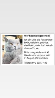Katze Mila vermisst