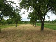 SUCHEN Freizeitgrundstück Garten Wiese Acker