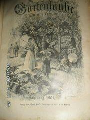 Die Gartenlaube Jahrgang 1901 gebunden