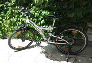 Mountainbike - Tecnobike Modell XOX Größe