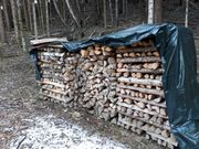 Brennholz - Birkenholz