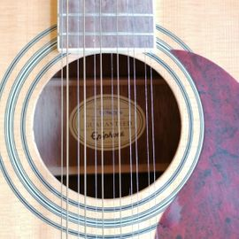Epiphone DR Gitarre