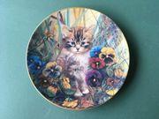 Bradex Katzen Sammelteller Kätzchens Gartenfreude