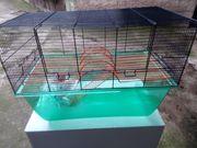 Hamster oder Mäusekäfig