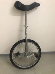 Einrad Metall bis 50 kg
