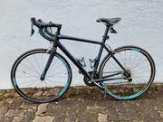 Rennrad Damen Speedster Blau
