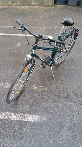 Damen-Fahrräder - Gudereit 28 Zoll grünes Damenfahrrad