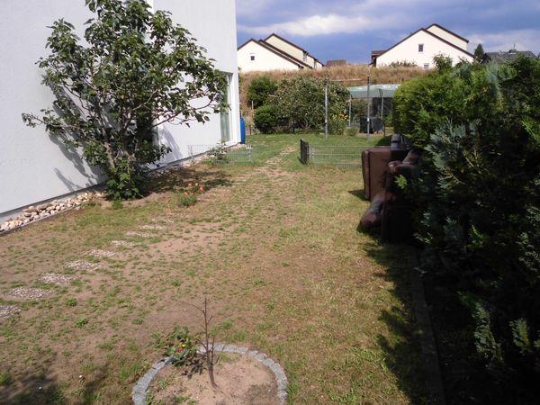 Biete Gartenmitbenutzung mit ohne großer