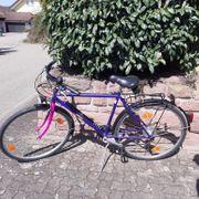 Jungherz Apollo Fahrrad wenig Kilometer