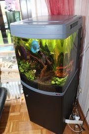 Sera Provesionel 130 LED Aquarium