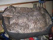 NEU 60cm Hundebett Katzenbett Wunderschönes