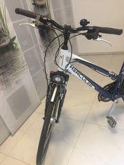 Fast neuwertiges Damen Fahrrad