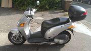 Honda Motorroller JF07