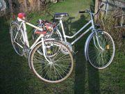 KTM Rennrad und Damenrad Torino