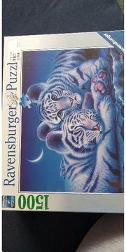 Ravensburger Puzzle weiße Tiger 1500