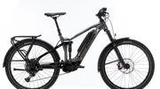 E-Bike Flyer Goroc 4
