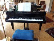 Klavier Flügel