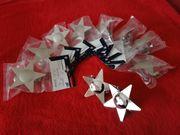 10 Gardinia Dekoklammern - Sterne