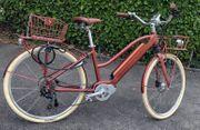 Elektronisches Bike EGO