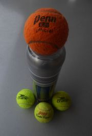 Tennisbälle Penns Crane mit 1