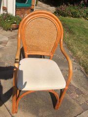 12 Stühle mit hellem Polster