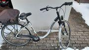 Fahrrad Tiefeinstieg Pegasus SL Comfort