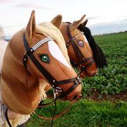 Hobby Horse Steckenpferd Hobbypferd Hobbyhorse