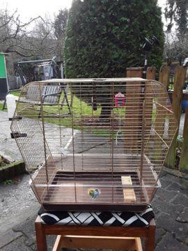 Käfig: Kleinanzeigen aus St Julian - Rubrik Vögel