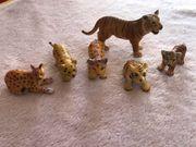 Raubkatzen Tiger Gepard