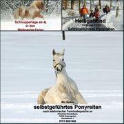 Selbstgeführtes Ponyreiten in 74538 Pferdehof