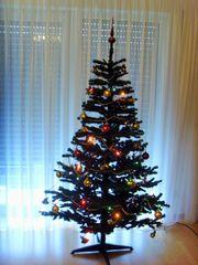 Tannenbaum mit Beleuchtung