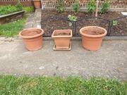 Wir geben 3 Pflanzkübel aus