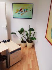 Hochwertige Büromöbel ahorn