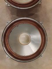 Lautsprecher Chassis