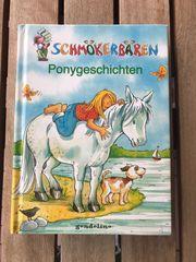 Buch Ponygeschichten Kinderbuch ab 8