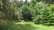 Gelegenheit im Odenwald