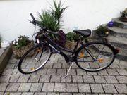 Damen-Trekking-Fahrrad PEGASUS - 28 Zoll - top