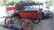 Superleichte Wagonette für Ein-und Zweispänner