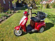 E-Trike 25 Rolektro E-Roller Seniorenmobil