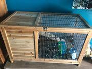 Kleintier Stall 3 Monate alt