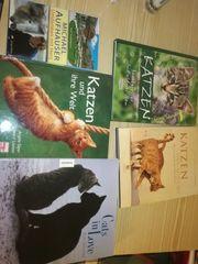 Katzenbücher neuwertig
