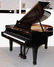 Flügel Klavier Steinway Sons M-170