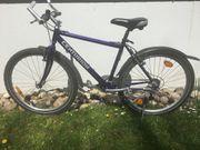 Mountainbike Centurion Foxx