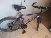 Fahrrad Bottechia 21 Gang