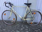 Fahrrad Hercules Toledo 28 - für