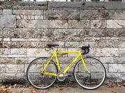 Vintage Rennrad Neuaufbau - Top Zustand